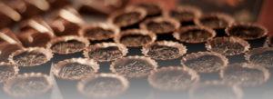 reine de graines spécialité chocolats